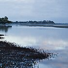 Nudgee Beach at dawn. by Judy Harland