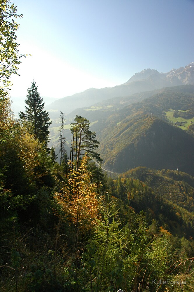 Austrian Forests by KylieForster