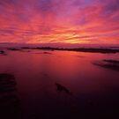 Kaikoura dawn II - NZ by Tony Middleton