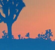 California Desert Sticker