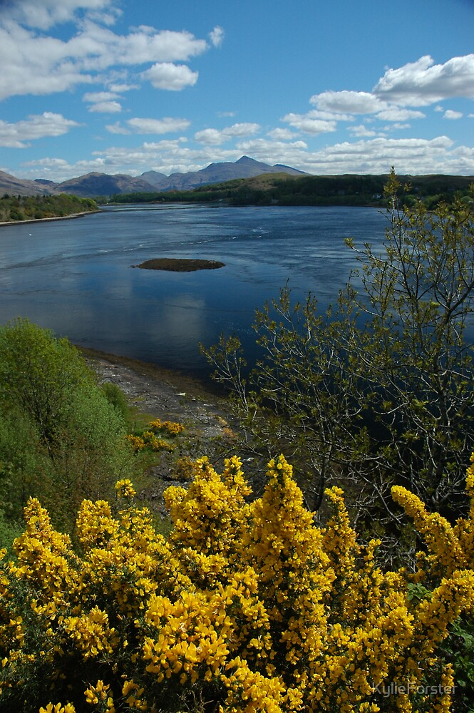 Scenic Oban  by KylieForster