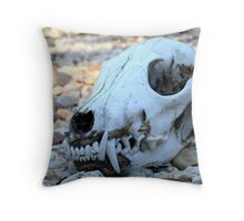 In the dry creek bed. (fox) Throw Pillow