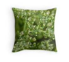 Green Diamonds Throw Pillow