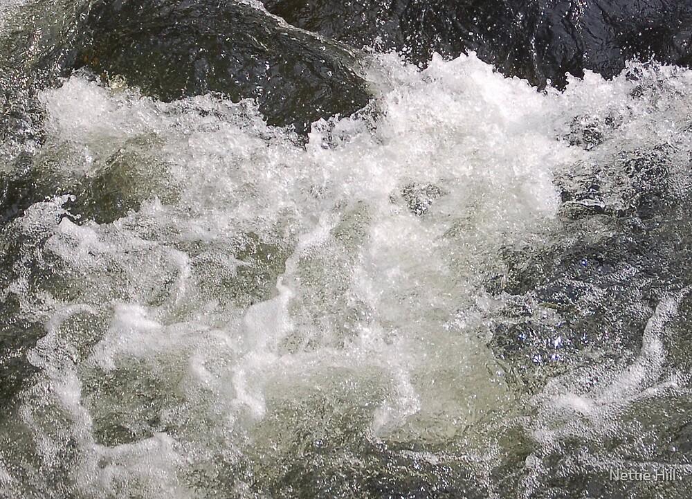 Water foam by Nettie Hill
