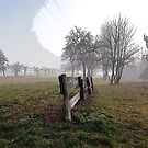 fog scenic by rkss
