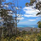 Orford hill view to Maria Island by gaylene