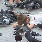 Pigeons... by Stevie Toye