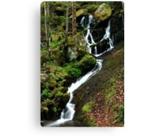 Spring Cascade  Canvas Print