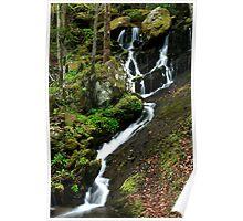 Spring Cascade  Poster
