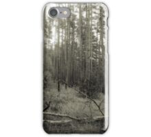 Vintage Photo of Pine Forest 2 iPhone Case/Skin