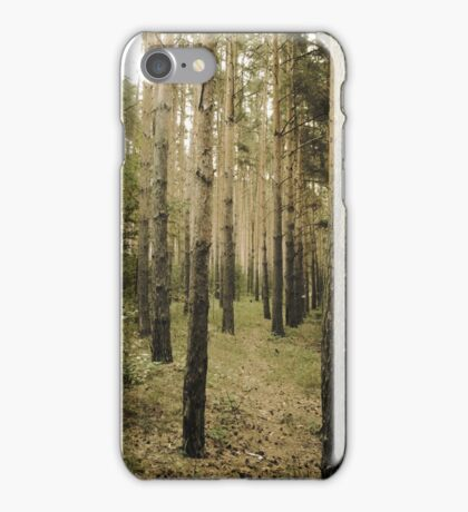 Vintage Photo of Pine Forest 5 iPhone Case/Skin