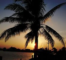 Cayman Sunset by calyhpso1313