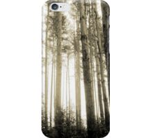 Vintage Photo of Pine Forest 8 iPhone Case/Skin