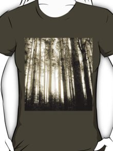 Vintage Photo of Pine Forest 8 T-Shirt