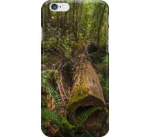 Forest View iPhone Case/Skin