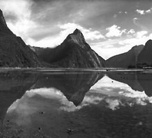Milford Sound - Fiordland NZ by Tony Middleton