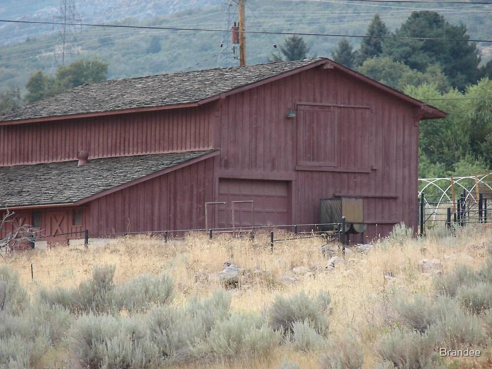 Red barn by Brandee