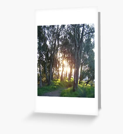 To the Secret Fishing Spot Greeting Card