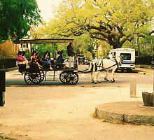 A Carriage Ride In Charleston by Bridgett Cooper