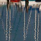 Evans Bay Marina by Werner Padarin