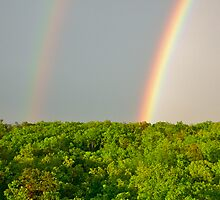 double rainbow by micheria
