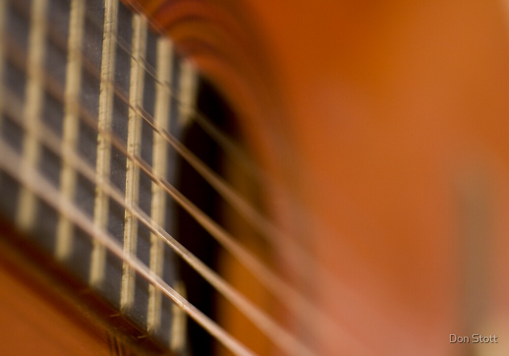 Folk Guitar close up by Don Stott