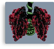 Pohutukawa Tree Lungs, from the New Zealand Forest Canvas Print