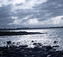 port fairy by wildflowers