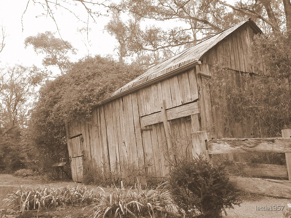 Barn at Schwerkolt Cottage in Sepia Print  by lettie1957