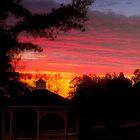 Evening Splendor by Chanel70