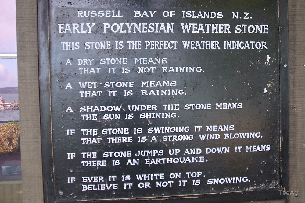 How to predict the weather in NZ lol  by TeeAy