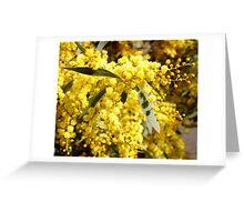 Wattle Greeting Card