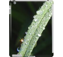 Sparkling Dew Drops iPad Case/Skin