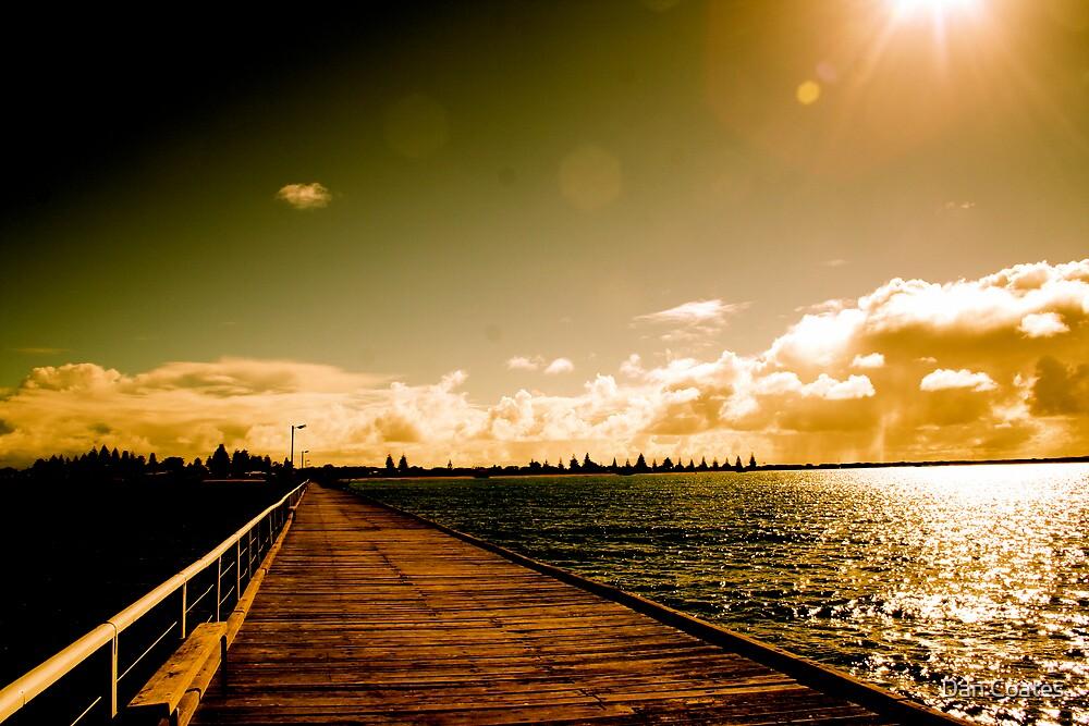 Sunshine by Dan Coates