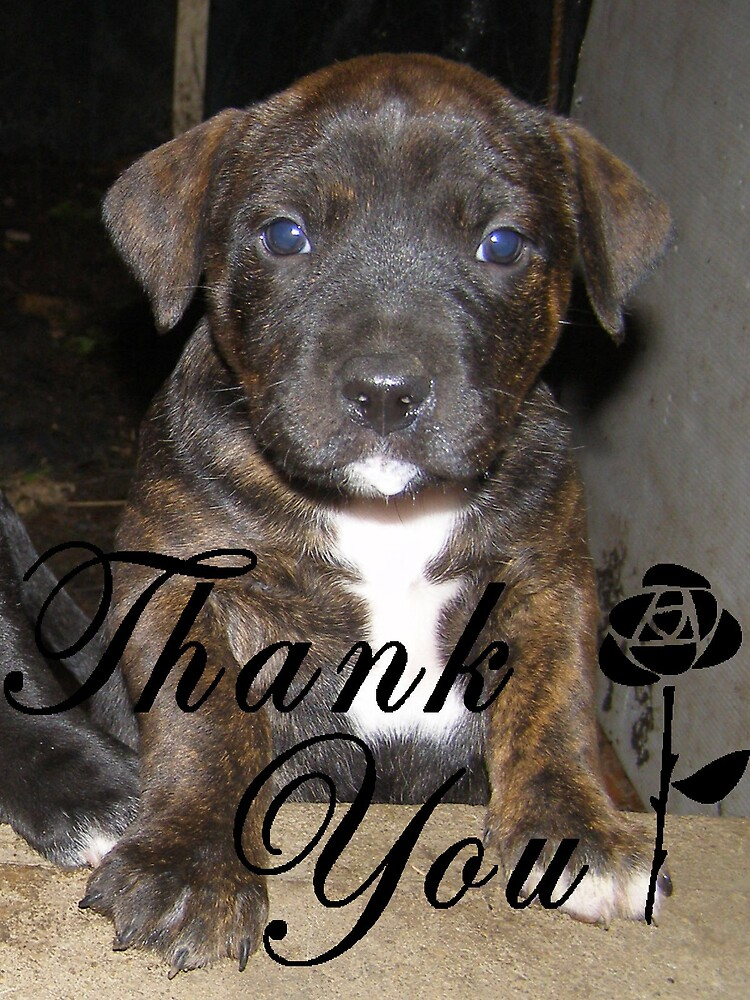 Thank You - Staffy by charmaine