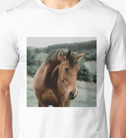 vintage horse animal painting art Unisex T-Shirt
