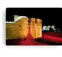 888,246 Red Poppies Canvas Print