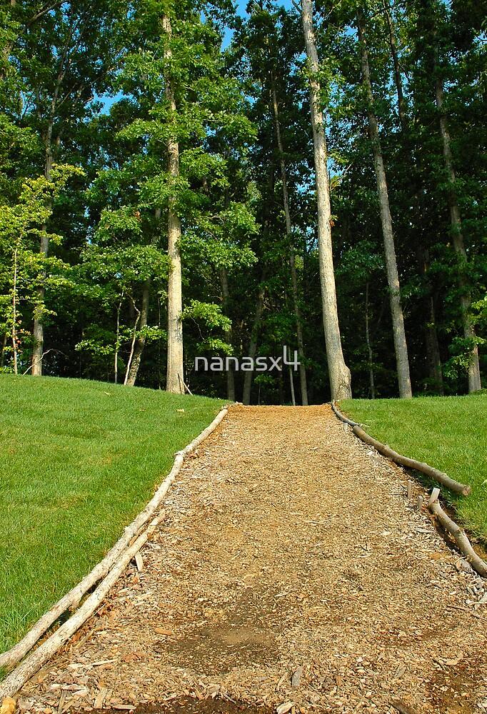 The walking trail by nanasx4