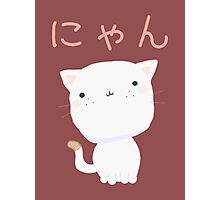 Kawaii Little Cat Photographic Print