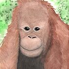 Baby Orang Utang by David Roberts