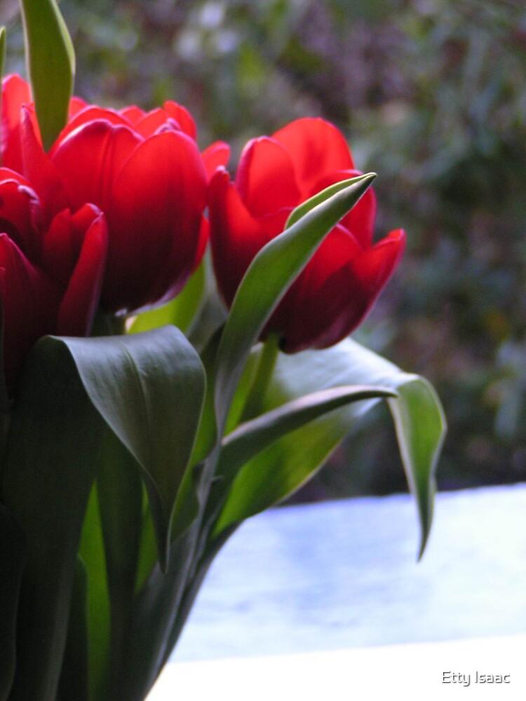 Flowers by Etty Baruch