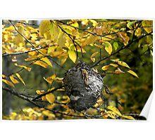 Hornet's Nest II Poster