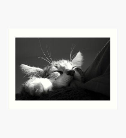 Kitten Sleeping BW Art Print