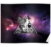 Cat Skull Poster