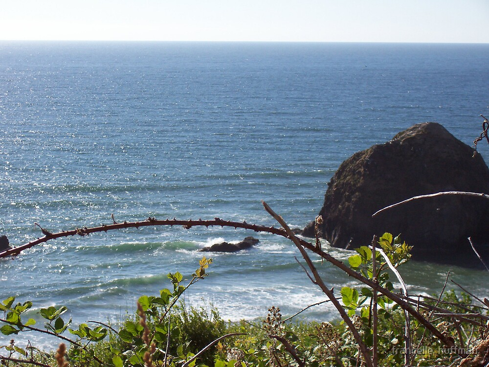 oregon coast serene by francelle  huffman