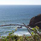 oregon coast serene by francelle  huffman