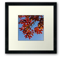 A Perfect Autumn Square Framed Print