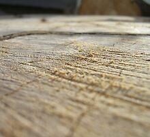 woodwork by irishfirehound