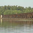 Santee Train Tracks by kerriwestbrook