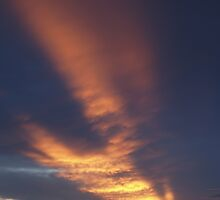 Texas Backyard Sunset by CraigL